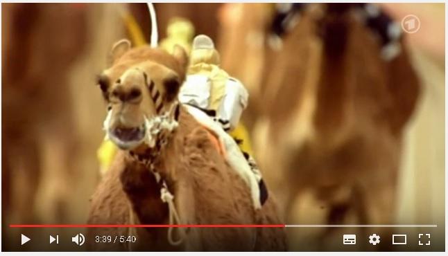 Video: Roboter Jockeys beim Kamelrennen