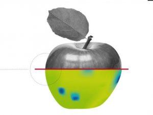 Kostenfreies Spectral Imaging Vortragsforum