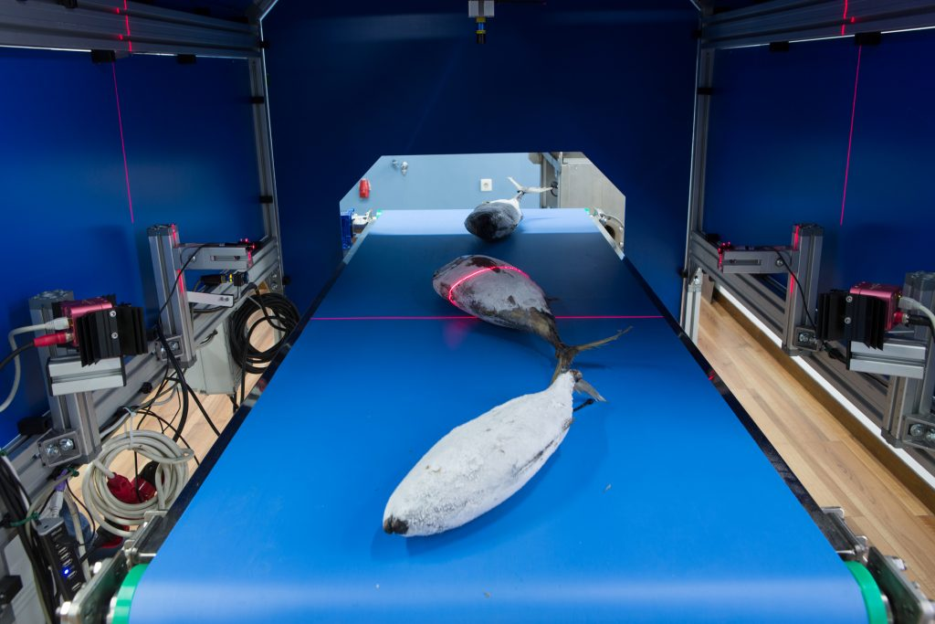 3D-Lasertriangulations-Kamera
