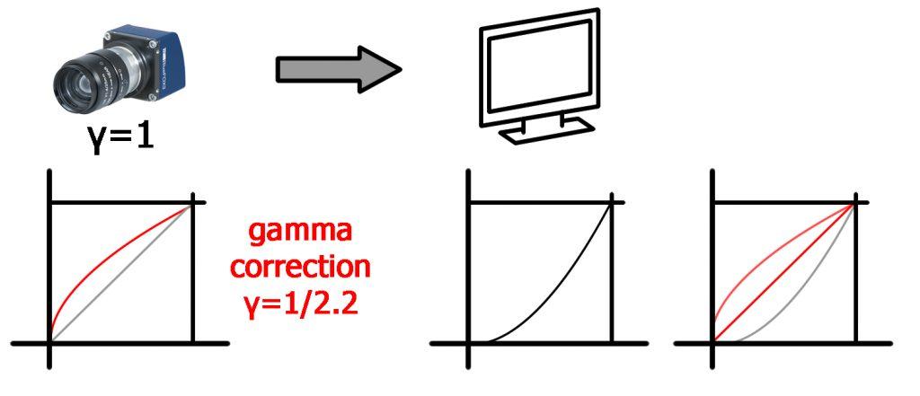 Gamma-Ausgleich eines Monitors (links); Gamma-Korrektur in der Kamera, um einen idealen Gamma-Wert (rot) zu erhalten (rechts) (Bild: Matrix Vision GmbH)
