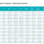 Performance-Übersicht börsennotierter Vision-Firmen