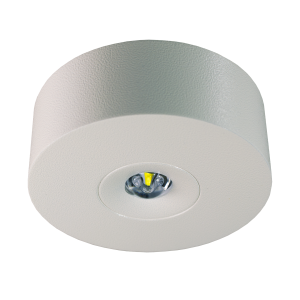 LED-Sicherheitsleuchte Typ IL (Bild: RP-Technik GmbH)