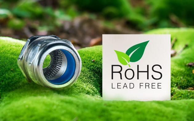 Moss in forest (Bild: Pflitsch GmbH & Co. KG)