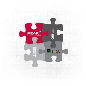 (Bild: PEAK-System Technik GmbH)